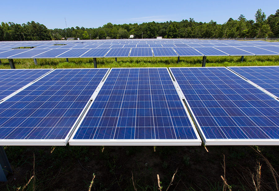 Solar energy: Your guide to going green in South Carolina
